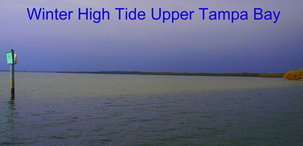 florida_gulf_coast_tides_high_tide_in_upper_tampa_bay_florida
