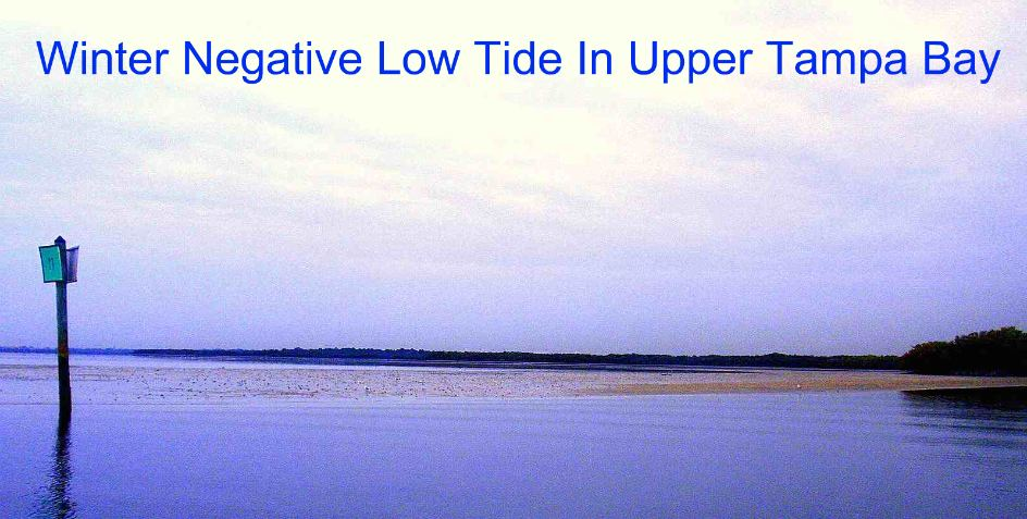 florida_saltwater_negative_low_tide_in_tampa_bay_florida